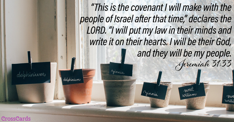Your Daily Verse - Jeremiah 31:33