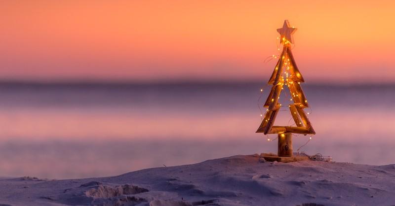 christmas tree decoration in snow, bring wonder back to christmas season