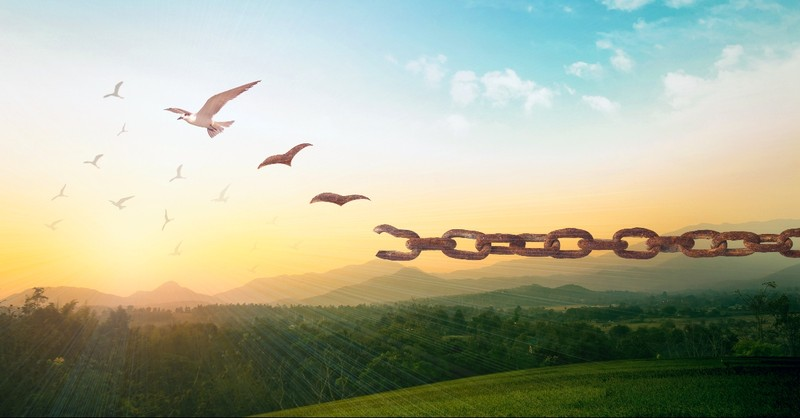 Chains breaking into doves