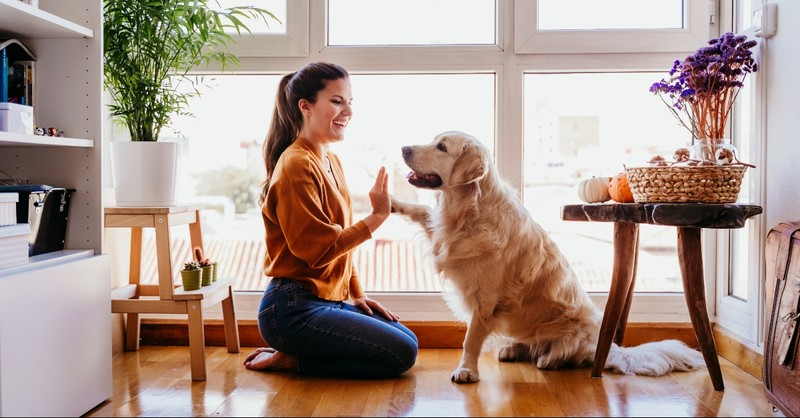 Woman high fiving her dog