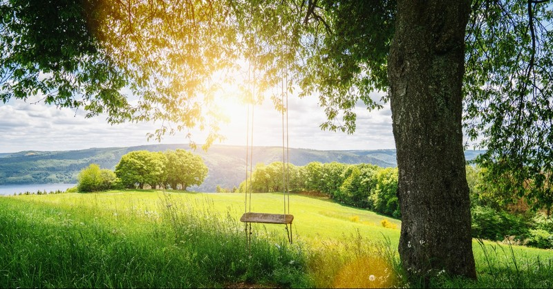Mountain sunrise view with a tree and rope swing