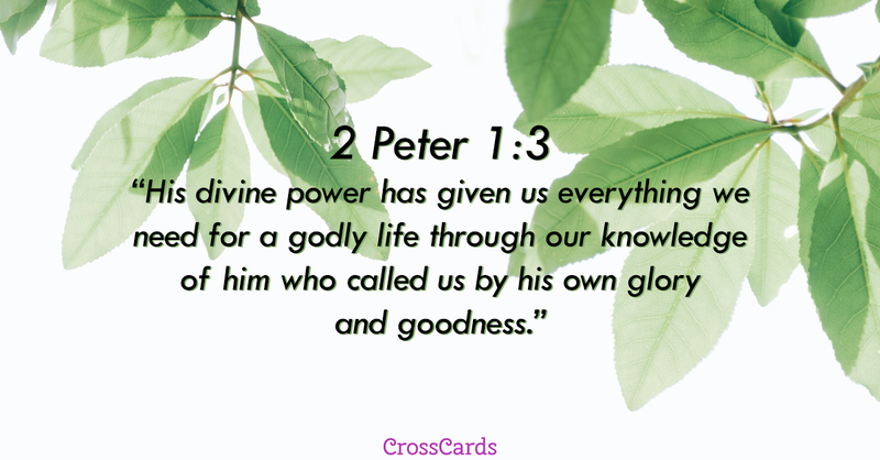 Your Daily Verse - 2 Peter 1:3