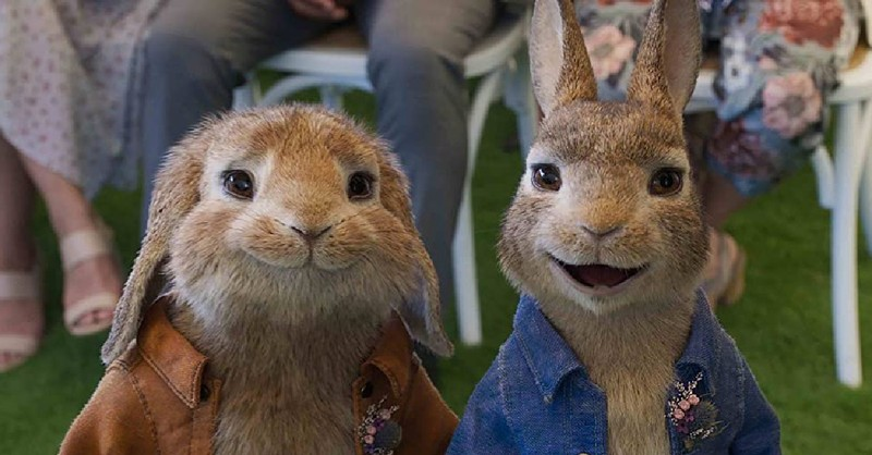 Peter Rabbit 2, things parents should know about Peter Rabbit