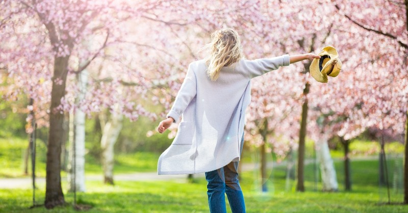 Woman in trees of cherry blossoms