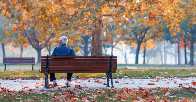 Older man sitting alone on a park bench
