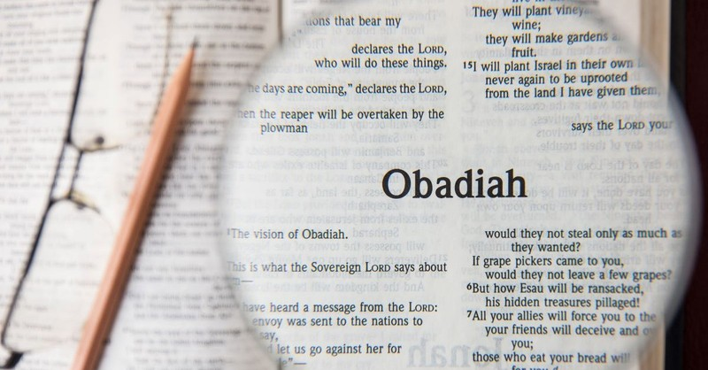 obadiah book of obadiah magnifying glass bible study