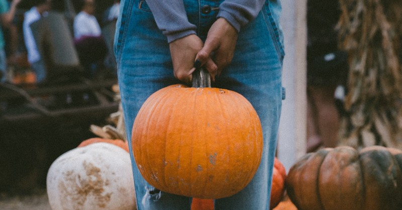 What Picking Pumpkins Taught Me about Love