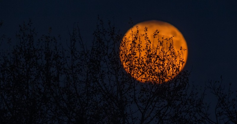Is Halloween Pagan and Evil?
