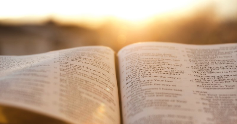 What Does it Mean that the Bible Is Infallible? What Is Biblical Infallibility?