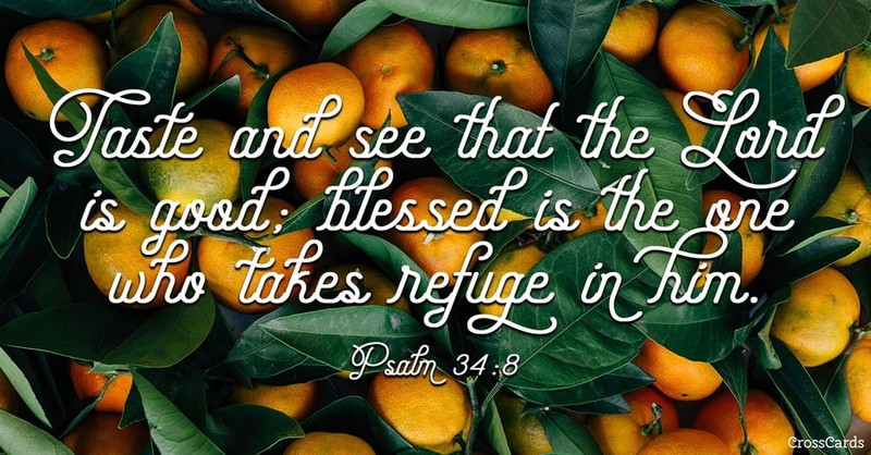 oranges in background of Psalm 34:8 verse, taste and see that the Lord is good