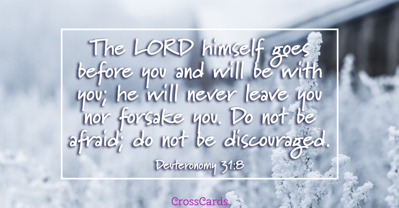 Your Daily Verse - Deuteronomy 31:8