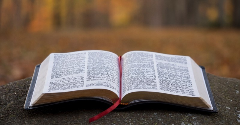 Why the Bible Is Not a Prop