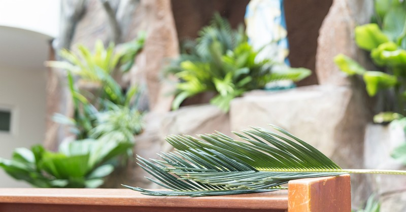 What Is the Meaning of Hosanna in the Bible?