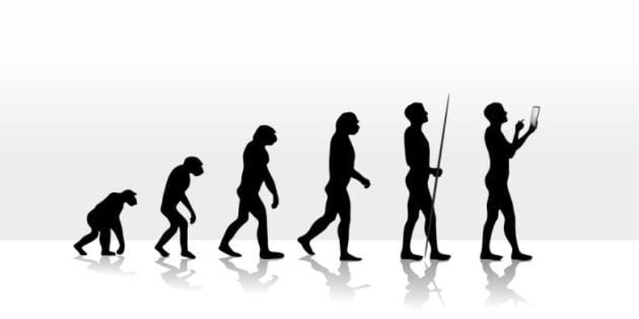 Evolution is Most Certainly a Matter of Belief... and so is Christianity
