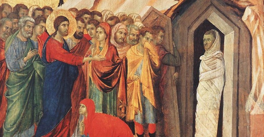 Everything They Want to Know about Jesus (but Have Been Afraid to Ask)