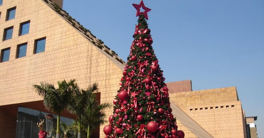 Iraq: Muslim Businessman Erects Giant Christmas Tree in Show of Solidarity with Christians