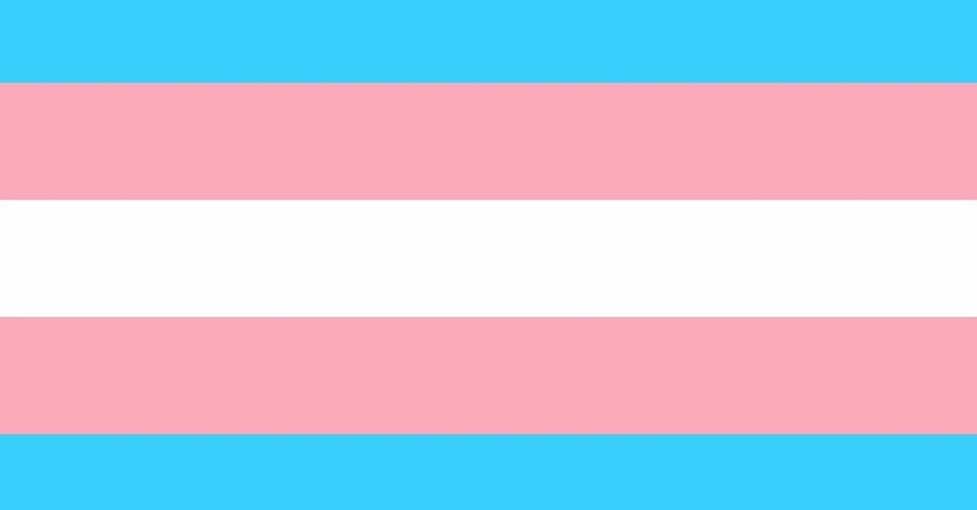 Mother Whose Child was Given 'Gender Transition Care' without Parental Consent Appeals to Supreme Court