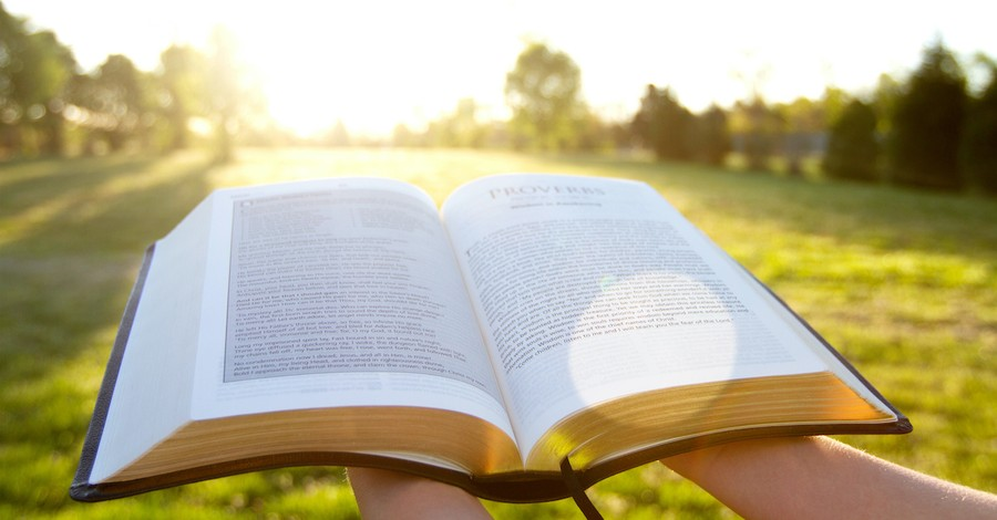 hands holding open Bible in bright sunny field, God' forgiveness