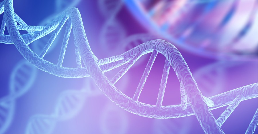 A DNA strand, scientist share evidence for creationism