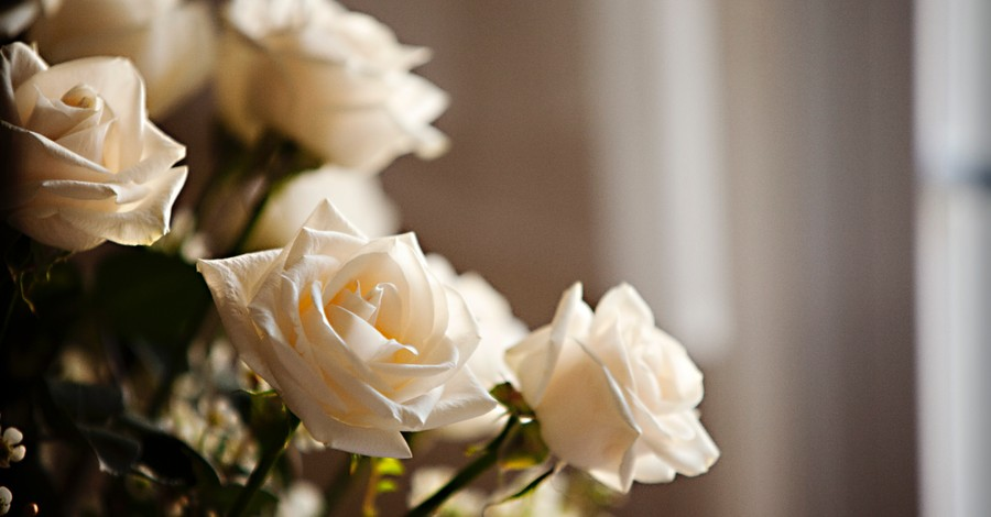 White Roses, Ole Anthony dies at 82