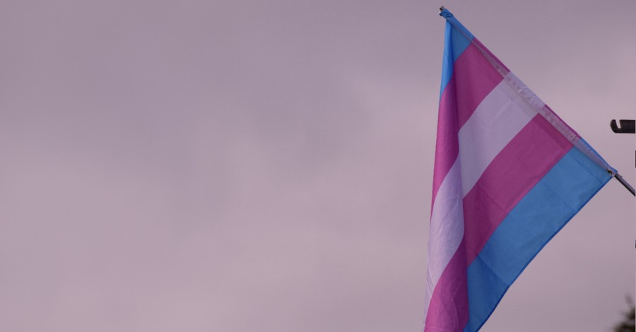 The transgender flag, Pixar is casting its first transgender character