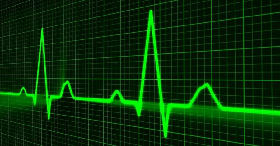 heartbeat, Idaho's governor signs fetal heartbeat bill