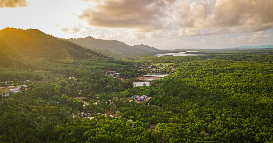 a city in the jungle, IMB requires missionaries to be vaccinated against COVID