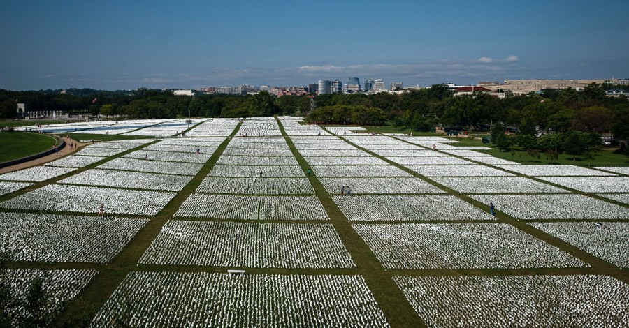 Rows of white flags, More than 660,000 white flags are displayed on the National Mall lawn in honor of Americans killed from COVID-19