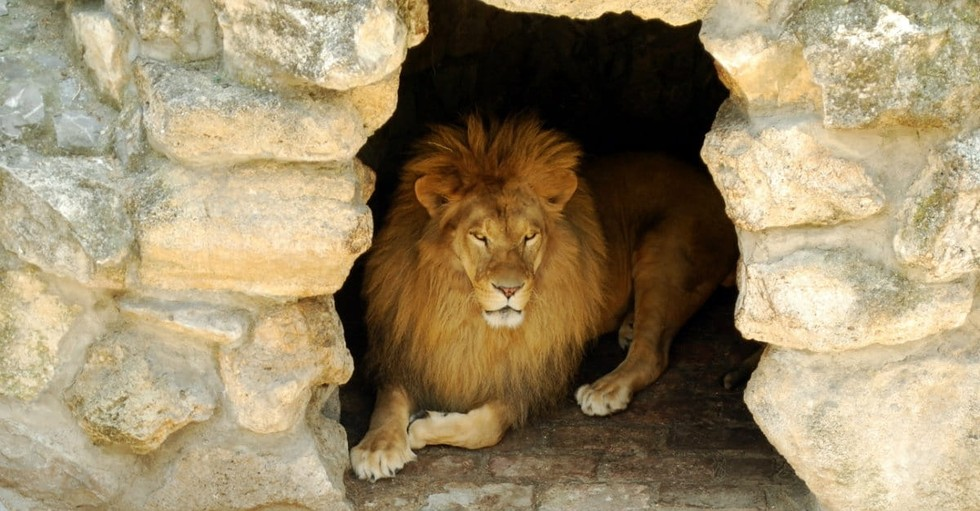 10 Things You Might Not Know about Daniel in the Bible